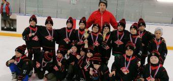 Открытый турнир по хоккею с шайбой, посвященный Дню Победы в Великой Отечественной войне, среди юношей 2014 года рождения